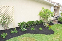 Katy Landscaping7