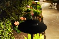 Katy Outdoor Lighting 061