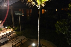 Katy Outdoor Lighting037