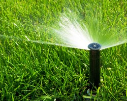 Houston & Katy Residential Sprinkler Repair/Installation Service: