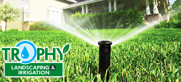 katy-Sprinkler-repair-Sprinkler-system4