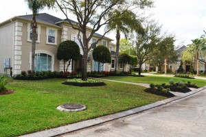 Cinco Ranch Area and Katy Landscaping